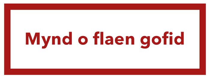 mynd o flaen gofid